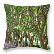 Norfolk Botanical Garden 5 Throw Pillow