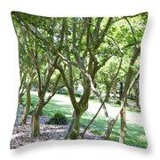 Norfolk Botanical Garden 7 Throw Pillow