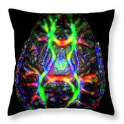Normal Brain Diffusion Tractography Throw Pillow