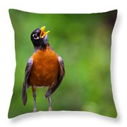 North American Robin In Song Throw Pillow by Rick Furmanek