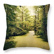 North Carolina 2 Throw Pillow