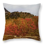 North Carolina Beauty Throw Pillow