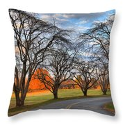 North Carolina Sloan Park Sunset Throw Pillow
