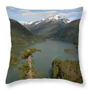 North Cascades Throw Pillow