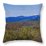 North Cascades Game Range Panorama Throw Pillow