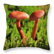 North Cascades Mushrooms Throw Pillow