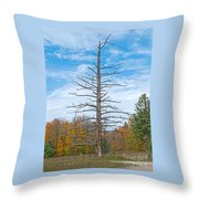 North Country Byway Throw Pillow