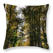 North Lions Park - Mount Vernon Washington Throw Pillow