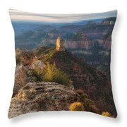 North Rim Grand Canyon Arizona Point Imperial Bathed By Sunrise Golden Light. Throw Pillow