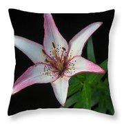 North Star 6 Throw Pillow