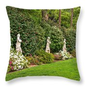 North Vista - Spring Flower Blooms At The North Vista Lawn Of The Huntington Library. Throw Pillow