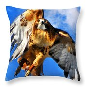 North Wind Throw Pillow by Christina Rollo