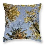 North Woods In The Fall Throw Pillow