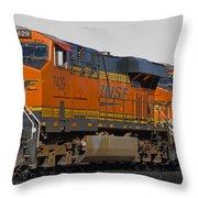 Northern Arizona's Orange Lumbering Beast Throw Pillow