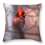 Northern Cardinal Dominent Male Throw Pillow