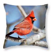 Northern Cardinal Scarlet Blaze Throw Pillow