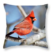 Northern Cardinal Scarlet Blaze Throw Pillow