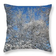 Northern Colors Throw Pillow
