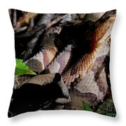 Northern Copperhead Throw Pillow