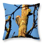 Northern Flicker At Sunrise Throw Pillow
