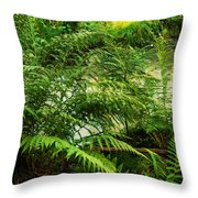 Northern Forest 3 Throw Pillow