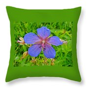 Northern Geranium In Jasper National Park-alberta  Throw Pillow