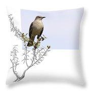 Northern Mockingbird Throw Pillow