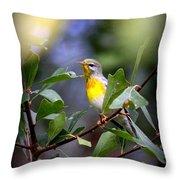 Northern Parula 9308-002 Throw Pillow