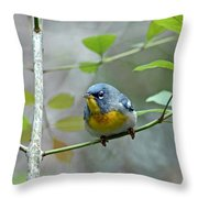 Northern Parula On Branch Throw Pillow
