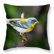 Northern Parula Warbler Throw Pillow