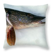 Northern Pike Fish On Snow, Close Throw Pillow