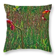 Northern Pitcher Plant In French Mountain Bog On Cape Breton Isl Throw Pillow