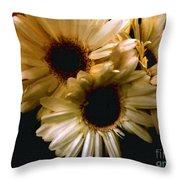Northern Renaissance Rustic Throw Pillow