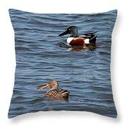 Northern Shoveler Pair Throw Pillow