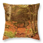 Northumberland, England  A Creek Throw Pillow