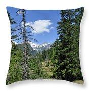 Northwest Frontier Throw Pillow