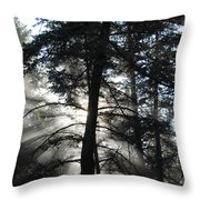 Northwoods Morning Throw Pillow