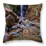 Norvan Falls Throw Pillow by James Wheeler