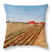 Norway Farm Throw Pillow