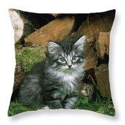 Norwegian Forest Kitten Throw Pillow