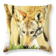Nose In The Grass Throw Pillow