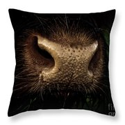 Nosy Throw Pillow