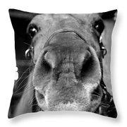 Nosy Bw Throw Pillow