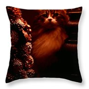 Not A Creature Was Stirring... Throw Pillow