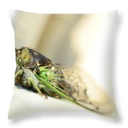 Not A Cute Bug Throw Pillow