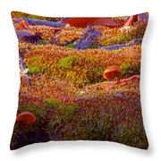 Not A Rolling Stone Throw Pillow