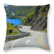 Not A Straight Path Throw Pillow