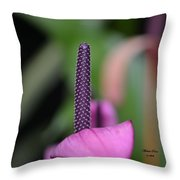 We Are One- Serenity Throw Pillow