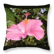 Soothes Your Soul -  Aroma Touch Throw Pillow