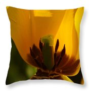 Not In There Throw Pillow